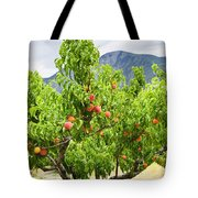 Peaches On Tree Tote Bag by Elena Elisseeva