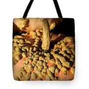 Peanut Pumpkins Tote Bag by Karen Wiles