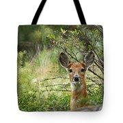 Peek A Boo Tote Bag by Ernie Echols