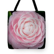 Pefectly Pink Tote Bag by Rich Franco