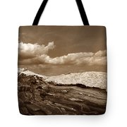 Pemaquid Point Lighthouse Tote Bag by Skip Willits
