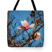Pink Magnolia Flower Tote Bag by Jai Johnson