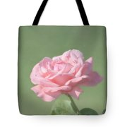 Pink Rose Tote Bag by Kim Hojnacki