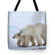 Polar Bear Ursus Maritimus And Cub Tote Bag by Suzi Eszterhas