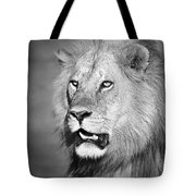Portrait Of A Lion Tote Bag by Richard Garvey-Williams