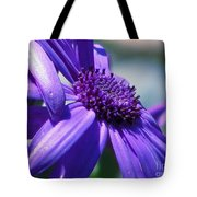 Pretty In Pericallis Tote Bag by Rory Sagner