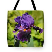 Purple And Orange Iris Flower Tote Bag by Jai Johnson