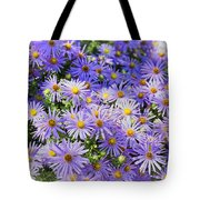 Purple Reigns Tote Bag by Joan Carroll