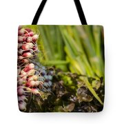 Radishes At The Market Tote Bag by Heather Applegate