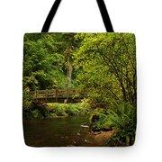 Rain Forest Bridge Tote Bag by Adam Jewell