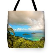 Rain In The Tropics Tote Bag by Keith Allen