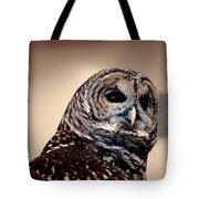 Rain Owl Tote Bag by LeeAnn McLaneGoetz McLaneGoetzStudioLLCcom