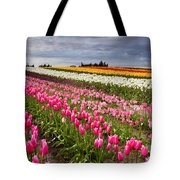 Rainbow Fields Tote Bag by Mike  Dawson
