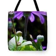 Reaching For The Future Tote Bag by Rory Sagner
