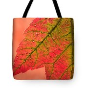 Red Autumn Tote Bag by Carol Leigh