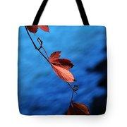 Red Maple Leaves Tote Bag by Paul Ge