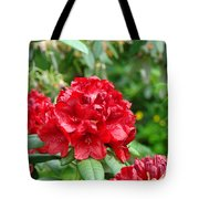 Red Rhododendron Floral Art Prints Rhodies Tote Bag by Baslee Troutman
