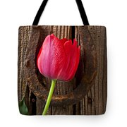 Red Tulip And Horseshoe  Tote Bag by Garry Gay