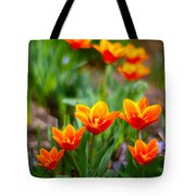Red Tulips Tote Bag by Paul Ge