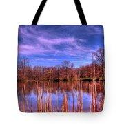Reeds Tote Bag by Paul Ward