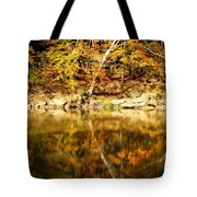 Reflex Tote Bag by Ed Smith