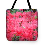 Rhodies Art Prints Pink Rhododendrons Floral Tote Bag by Baslee Troutman