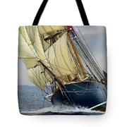 Riding The Wind Tote Bag by Robert Lacy