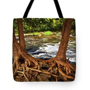 River and trees Tote Bag by Elena Elisseeva