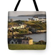 Roches Point Lighthouse In Cork Harbour Tote Bag by Trish Punch
