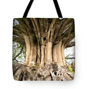 Roots Tote Bag by Heiko Koehrer-Wagner