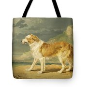 Rough-coated Collie Tote Bag by James Ward