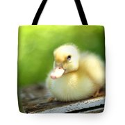 Sally Tote Bag by Amy Tyler