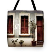 San Juan Living Tote Bag by Perry Webster