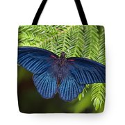 Scarlet Swallowtail Tote Bag by Joann Vitali