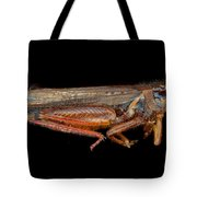 Science - Entomology - The Specimin Tote Bag by Mike Savad