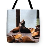Sea Lions At Pier 39 San Francisco California . 7d14314 Tote Bag by Wingsdomain Art and Photography