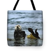 Sea Otter Enhydra Lutris Wrapped Tote Bag by Konrad Wothe
