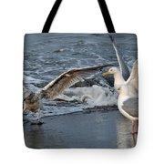 Seagull Treasures Tote Bag by Debra  Miller