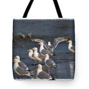 Seagulls Gathering Tote Bag by Debra  Miller