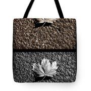 Seasons Of Change Tote Bag by Luke Moore