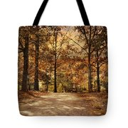 Secluded Entrance Tote Bag by Jai Johnson