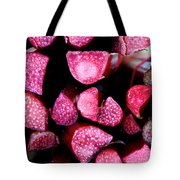 Seeking Pie Crust Tote Bag by Susan Herber