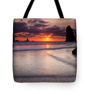 Setting Between The Needles Tote Bag by Mike  Dawson