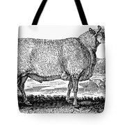 Sheep, C1800 Tote Bag by Granger