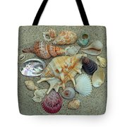 Shell Collection 2 Tote Bag by Sandi OReilly