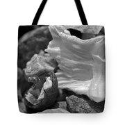Shells Vi Tote Bag by David Rucker