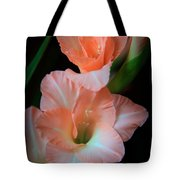 Simply Glad Tote Bag by Karen Wiles