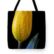 Single Yellow Tulip Tote Bag by Garry Gay