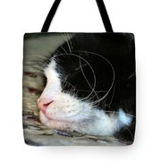 Sleepytime Tote Bag by Art Dingo