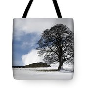 Snowy Field And Tree Tote Bag by John Short
